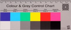 B.I.G. Colour and Grey Control Chart 60x142 mm